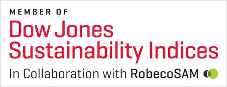 Dow Jones Sustainability World Index Logo